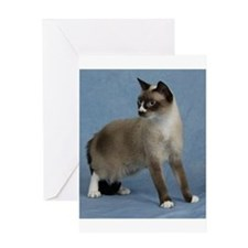 Cute Snowshoe cat Greeting Card