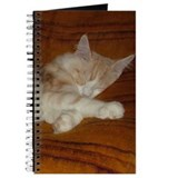 'Pink' Maine Coon Cat Spreadout Journal