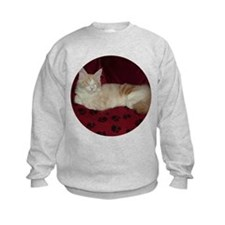 Smug 'Pink' Maine Coon Cat Sweatshirt
