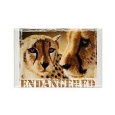 Endangered Cheetahs Rectangle Magnet