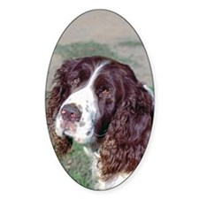 Spaniel Oval Decal