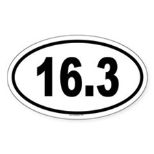 16.3 Oval Decal
