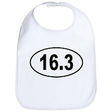 16.3 Bib