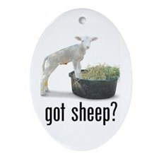 Keepsake (Oval) ~ Got Sheep?