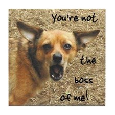 Rebel Chihuahua funny photo Tile Coaster