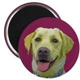 Grace the Yellow Labrador Magnet