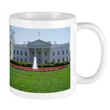 White House DC  Tasse