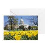 Capitol Building Greeting Cards (Pk of 20)