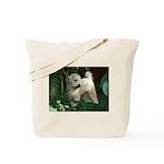 Bailey Beachboy Tote Bag