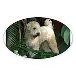 Bailey Beachboy Oval Sticker
