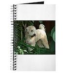 Bailey Beachboy Journal