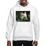 Bailey Beachboy Hooded Sweatshirt