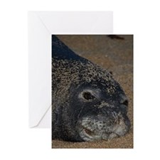 Monk Seal Greeting Cards (Pk of 10)