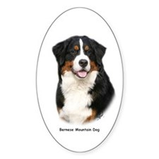 Bernese Mountain Dog 9Y348D-115 Decal