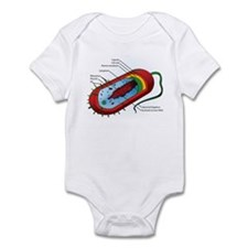 Bacteria Diagram Infant Bodysuit