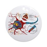Neuron cell Ornament (Round)