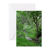 Spring on Fish Creek Greeting Cards (Pk of 10)