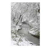 Winter on Fish Creek Postcards (Package of 8)