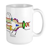 DNA Synthesis Coffee Mug