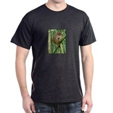 Song sparrow in tules T-Shirt