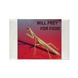 Mantis preys for food Rectangle Magnet (10 pack)