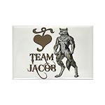 Team Jacob Rectangle Magnet (100 pack)