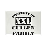 Property Of Cullen Family Rectangle Magnet (10 pac