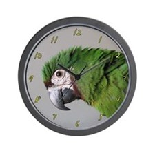 Havoc Says Hi Severe Macaw Clock