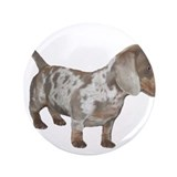 Speckled Dachshund Dog 3.5&quot; Button