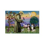 St Francis & 2 Tri Aussies Rectangle Magnet