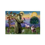 St Francis & Aussie Rectangle Magnet