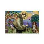 St Francis/ Aus Shep Rectangle Magnet (10 pack)