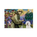 St Francis / Bichon Frise Rectangle Magnet (10 pac