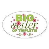 Big Sister of Triplets Oval Decal