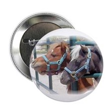 "Miniature Horse Lovers 2.25"" Button"