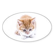 Cute Doggie Round Sticker