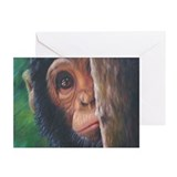 """Shy"" Greeting Cards (Pk of 10)"