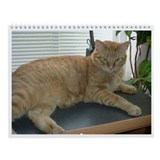 Orange Tabby Cat Wall Calendar