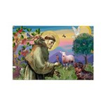 St Francis Doxie Rectangle Magnet