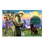 St Francis Chocolate Lab Postcards (Package of 8)