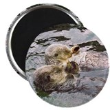 Sea Otter Love Magnet