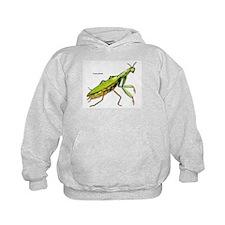 Praying Mantis Insect Hoodie