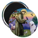 ST. FRANCIS + OES Magnet