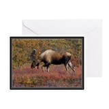 Autumn Moose Greeting Card
