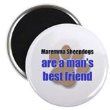 Maremma Sheepdogs man's best friend Magnet
