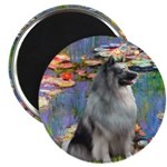 Lilies / Keeshond Magnet