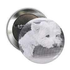 "tired westie 2.25"" Button"