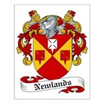Newlands Family Crest Small Poster