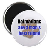 "Dalmatians man's best friend 2.25"" Magnet (10 pack"