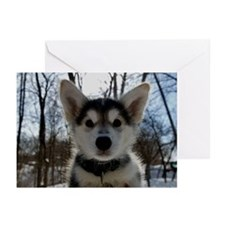 Siberian Husky Puppy Greeting Cards (Pk of 20)